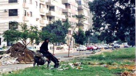 EGYPT=women-donkey-street-cars-garbage